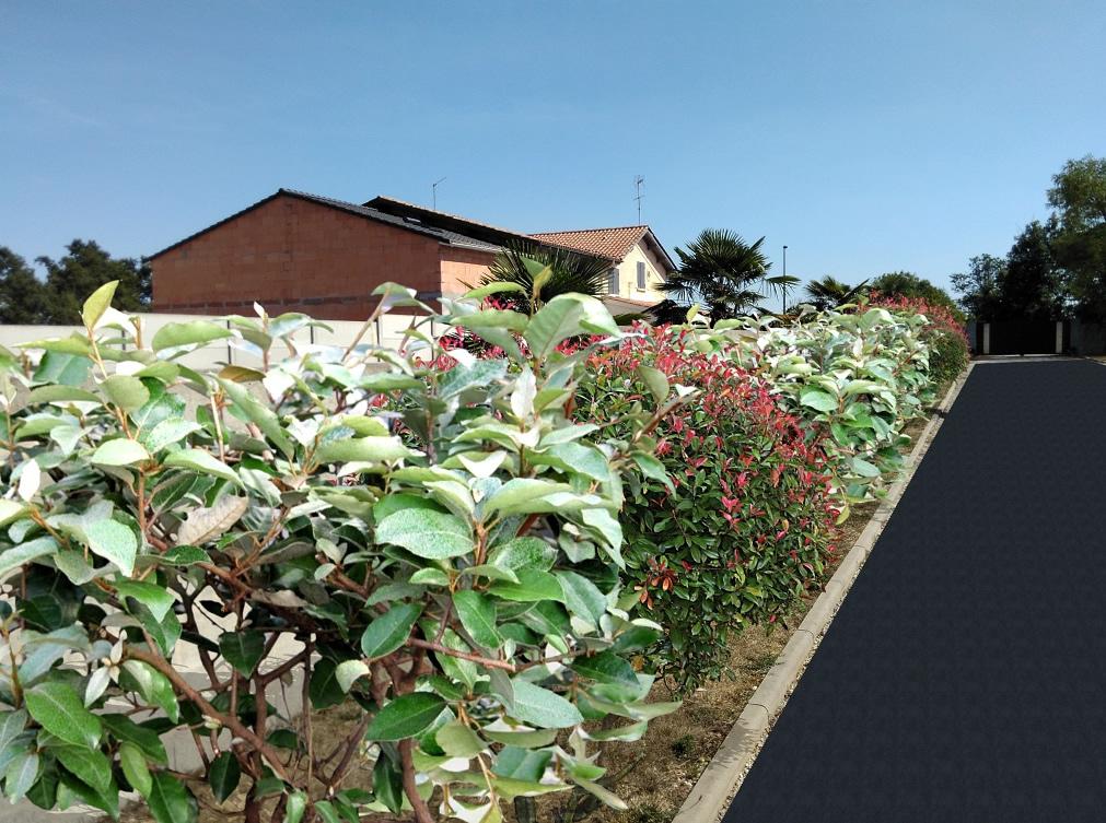Projet 2D 3D de votre Jardin - Paysagiste professionnel en ...