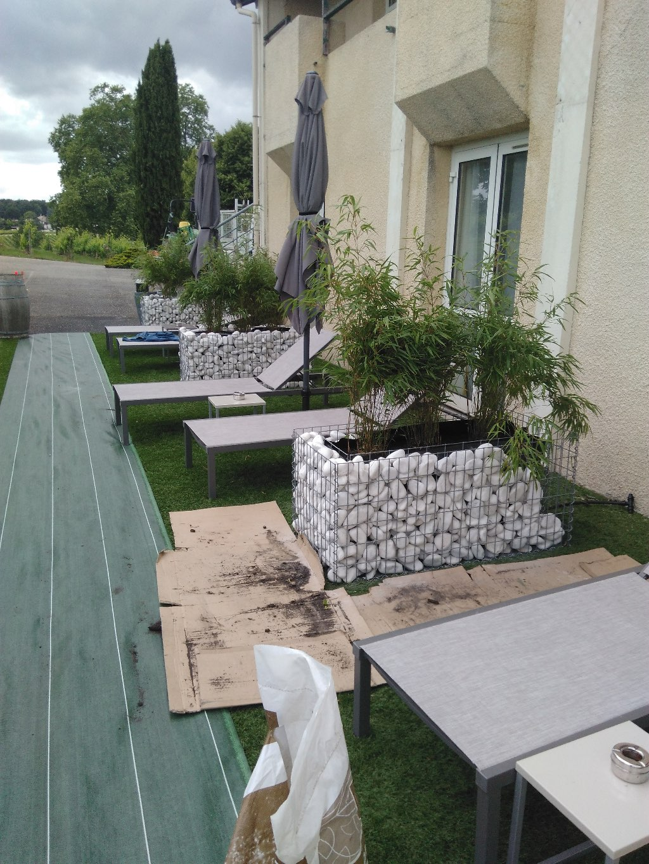 bambous en jardini res gabions paysagiste professionnel. Black Bedroom Furniture Sets. Home Design Ideas