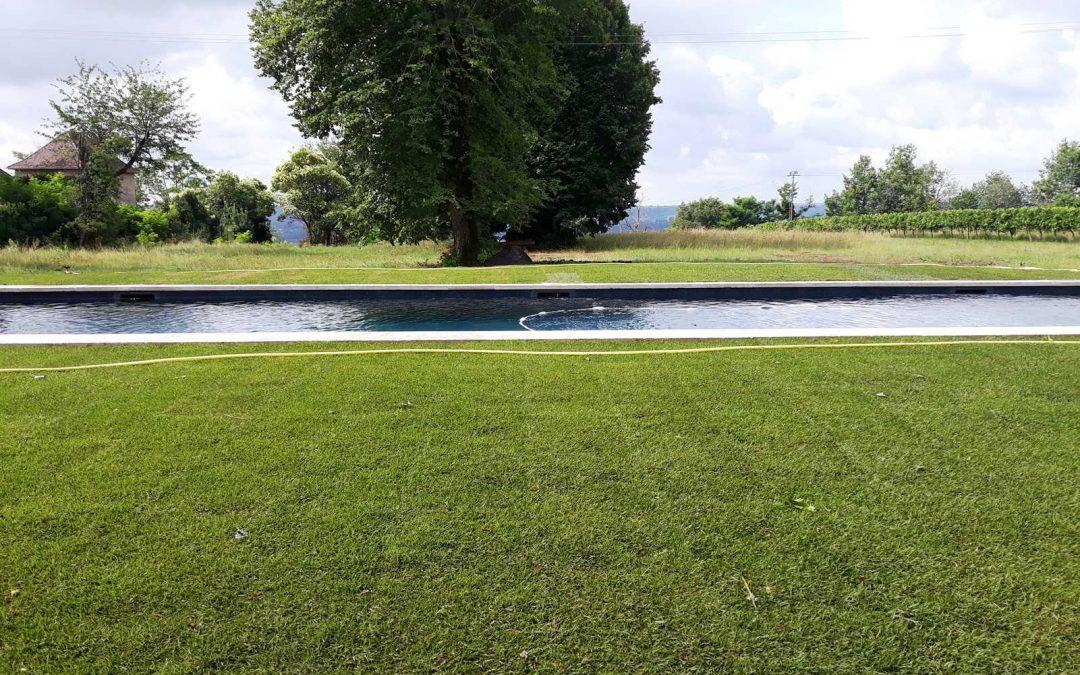 Pose de gazon en plaque autour d'une piscine.