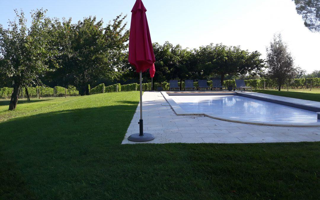 Aménagement autour d'une piscine. Pose de gazon en plaque.